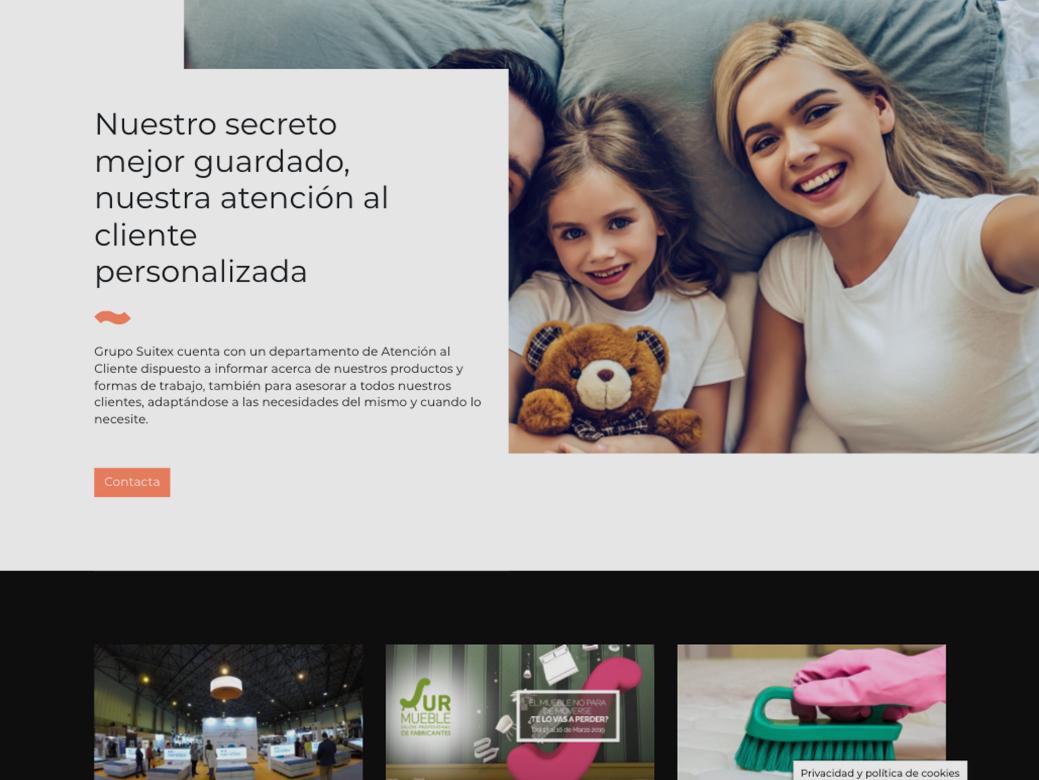 diseño web para Suitex